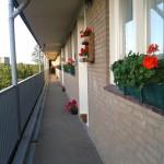 2012 Bloembakken Flat Ringweg Koppel (1)